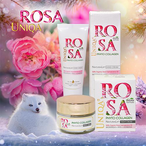 Rosa Uniqa